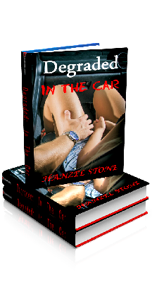 3D Ebook Cover - Degraded: In The Car - Degraded No.3 - by Hanzel Stone