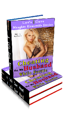 3D Ebook Cover - Cheating On My Husband While Fertile - Naughty Housewife Erotica No.2 - by Sherri Roberts