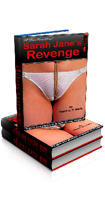 3D Ebook Cover - Sarah Jane's Revenge, by Phaedrus T. Wolfe