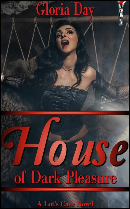 Book Cover Photo: House of Dark Pleasure ~ by Gloria Day