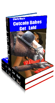 3D Ebook Cover - Cotcote Babes Get Laid ~ Meet the Slutlets No.4 ~ by Cindy May