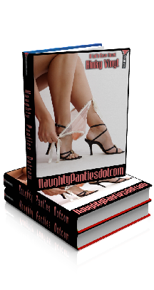 3D Ebook Cover - NaughtyPanties Dotcom, by Kinky Vinyl