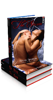 3D Ebook Cover - The Storm - Close for Comfort No.1 - by Tristan Sparrow