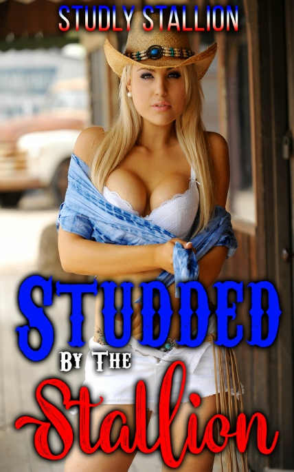 Book Cover Photo: Studded By The Stallion