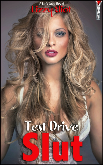 Book Cover Photo: Test Drive Slut - by Lizzy Eliot